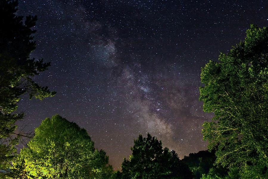 PNA-Fenetre boisee sur la Voie Lactée